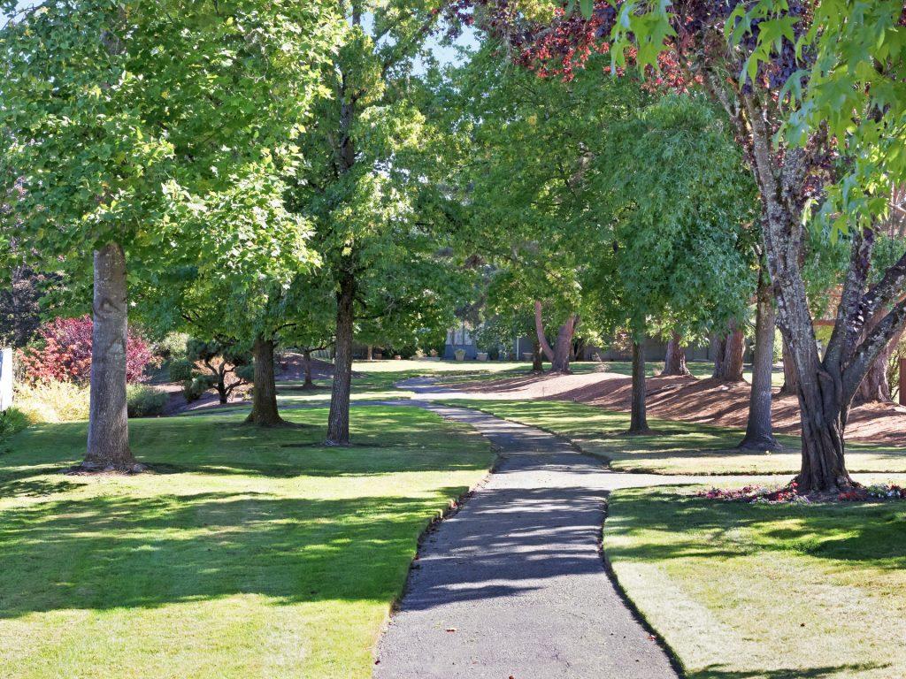 7098 SW Arranmore Way Portland-027-15-IMG 0198-MLS_Size